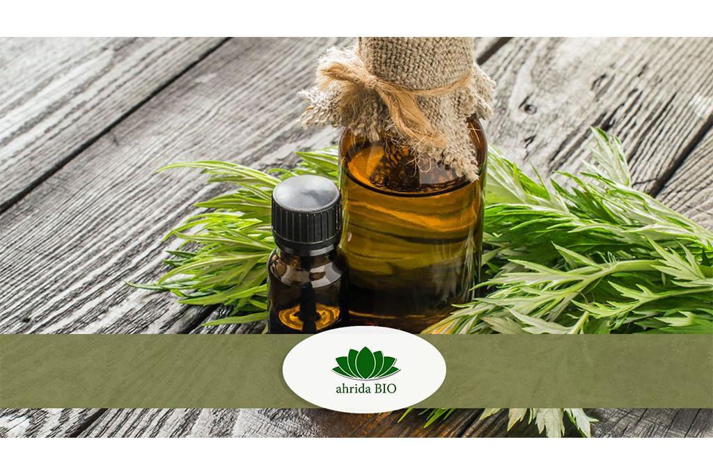 Проучвания показват, че Artemisia annua (растение) убива 98% от раковите клетки за 16 часа